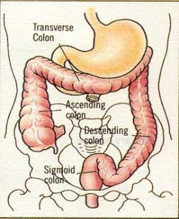 CRGH Gastroenterology and Liver Services