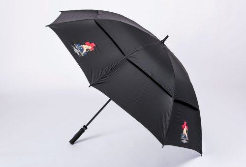 Umbrella - Black $35